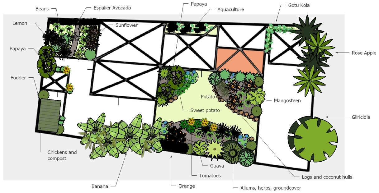 tropical permaculture design