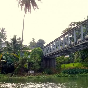 Waterfront gardens of the Mahaweli river